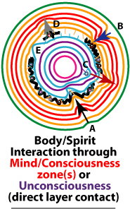 Body holon and spirit holon communicate through the mind holons