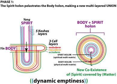 body and spirit connected, mind and body, endodern, mesoderm, ectoderm